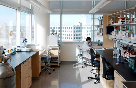 BCS Complex lab photo