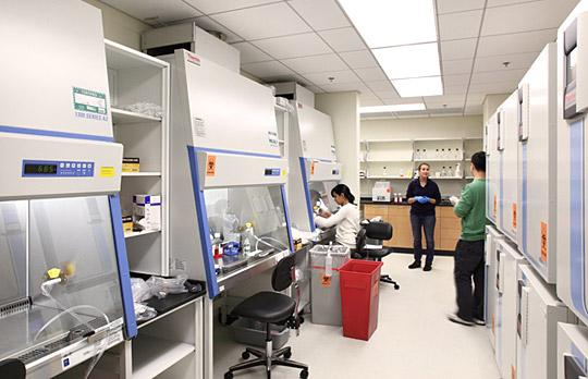 The Koch Institute Lab