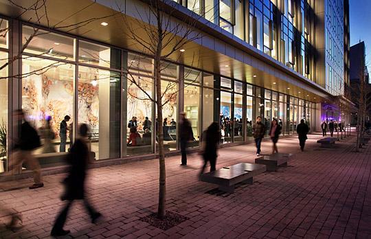 The Koch Institute sidewalk